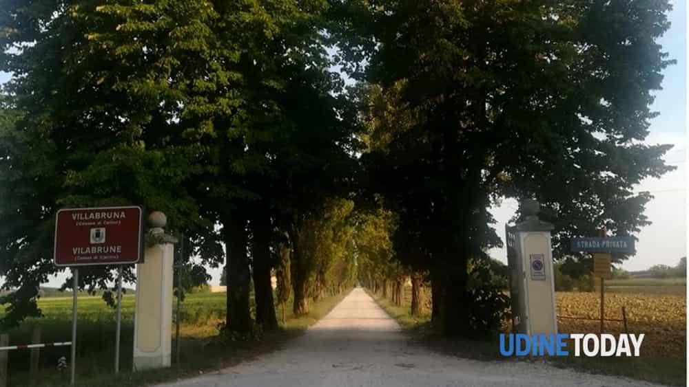 """""""verde sorpresa"""", guida ai giardini privati del friuli vg.-2"""