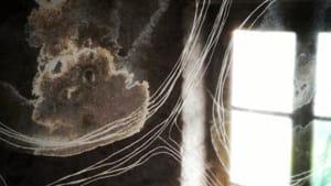 """""""simboli, archetipi, miti"""": la conclusione con l'arte di sonia casari-4"""