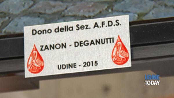 attivita' della sezione afds zanon deganutti - udine-4
