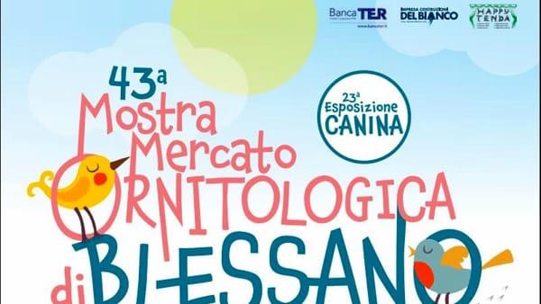 43esima Mostra Ornitologica di Blessano