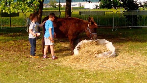 Una domenica al parco con Bimbi in Festa a Povoletto