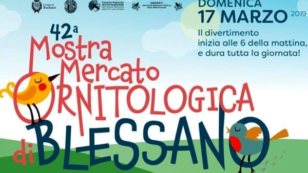 42esima Mostra Mercato Ornitologica di Blessano