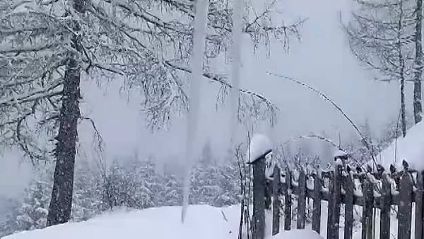 VIDEO La neve cade copiosa a Sauris di Sopra
