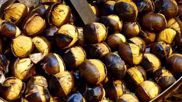 Burnjak- festa delle castagne