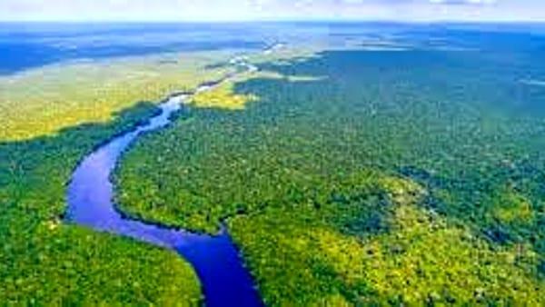 """""""Chi distrugge l'Amazzonia?"""", l'incontro in Sala Ajace"""