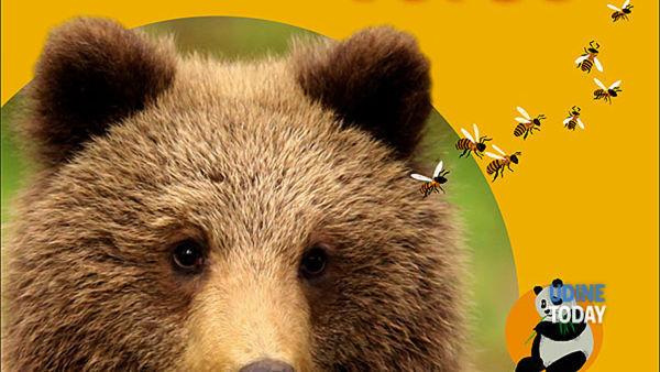 """""""Se tu fossi un orso"""" al villaggio degli orsi di Stupizza"""