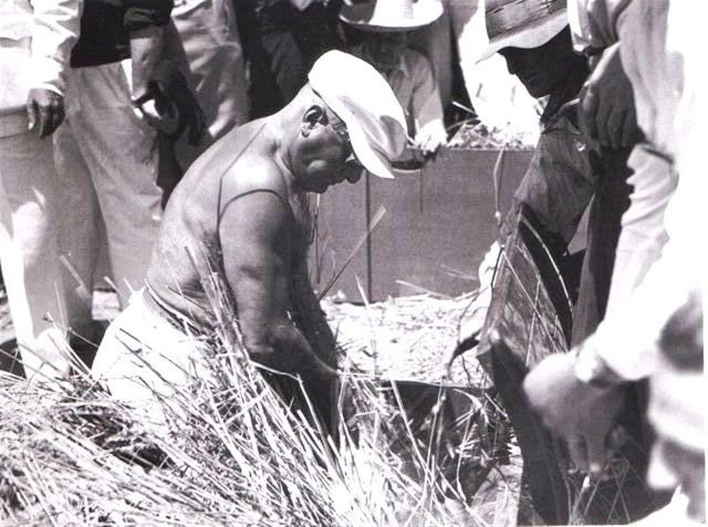 Il Duce alla 'battaglia del grano'