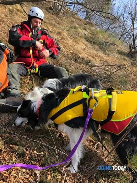 Salvati Neve e Jack, i due border collie dispersi da una settimana-2