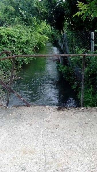 Il tratto della Roggia di Palma dove è stata trovata la salma di Elisea Angeli -2